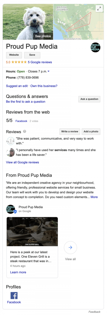 Google My Business-profile-Page