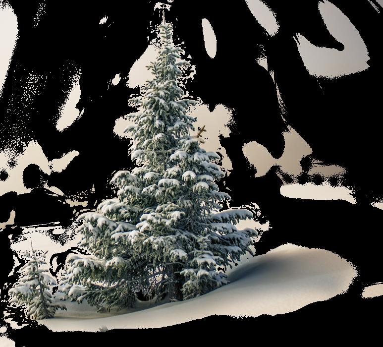 Christmas Web Design Sale! 1
